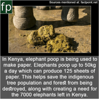 Memes, News, and Poop: Sources mentioned at: factpoint.net  fp  In Kenya, elephant poop is being used to  make paper. Elephants poop up to 50kg  a day which can produce 125 sheets of  paper. This helps save the indigenous  tree population and forest from being  destroyed, along with creating a need for  the 7000 elephants left in Kenya Subscribe to our YouTube channel: youtube.com-FactPoint check Source at : FactPoint.net- Or check this link: http:-www.bbc.com-news-business-36162953