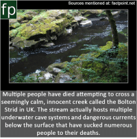 England, Memes, and youtube.com: Sources mentioned at: factpoint.net  fp  Multiple people have died attempting to cross a  seemingly calm, innocent creek called the Bolton  Strid in UK. The stream actually hosts multiple  underwater cave systems and dangerous currents  below the surface that have sucked numerous  people to their deaths. Subscribe to our YouTube channel: youtube.com-FactPoint check Source at : Factpoint.net- Or check this link: https:-feel-planet.com-danger-of-bolton-strid-england-uk-