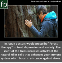 "Memes, News, and youtube.com: Sources mentioned at: factpoint.net  In Japan doctors would prescribe ""Forest  therapy"" to treat depression and anxiety. The  scent of the trees increases activity of the  natural killer cells that enhances your immune  system which boosts resistance against stress. Subscribe to our YouTube channel: youtube.com-FactPoint check Source at : Factpoint.net- Or check this link: https:-www.japantimes.co.jp-news-2008-05-02-national-forest-therapy-taking-root- .Wrzw3JeYO01"