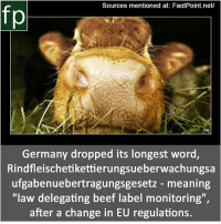 "Beef, Memes, and News: Sources mentioned at: FactPoint.net/  PA  Germany dropped its longest word,  Rindfleischetikettierungsueberwachungsa  ufgabenuebertragungsgesetz - meaning  ""law delegating beef label monitoring""  after a change in EU regulations. Subscribe to our YouTube channel: youtube.com-FactPoint check Source at : FactPoint.net- Or check this link: http:-www.bbc.com-news-world-europe-22762040"