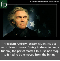 Children, Memes, and Thomas Jefferson: Sources mentioned at: factpoint.net  President Andrew Jackson taught his pet  parrot how to curse. During Andrew Jackson's  funeral, the parrot started to curse non-stop  so it had to be removed from the funeral Subscribe to our YouTube channel: youtube.com-FactPoint check Source at : Factpoint.net- Or check this link: https:-en.wikipedia.org-wiki-Thomas_Jefferson_and_slavery Sally_Hemings_and_her_children