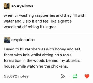 Elf, Formation, and House: souryellows  when ur washing raspberries and they fill with  water and u sip it and feel like a gentle  woodland elf reblog if u agree  cryptocurios  I used to fill raspberries with honey and eat  them with brie whilst sitting on a rock  formation in the woods behind my abuela's  house, while watching the chickens.  59,872 notes  A