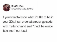 "Dank, Soda, and Orange: SovCit, Esq.  @CORPORATE NAME  If you want to know what it's like to be in  your 30s, Ijust ordered an orange soda  with my lunch and said ""that'll be a nice  little treat"" out loud"