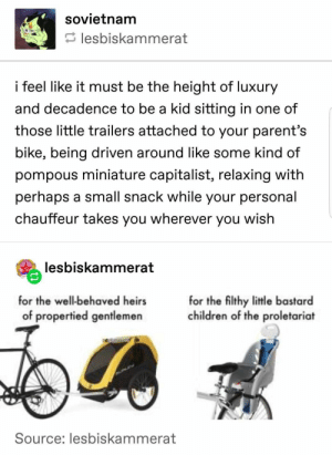 24+ Cheerful Tumblr Posts To Laugh Openly - LADnow: sovietnam  lesbiskammerat  i feel like it must be the height of luxury  and decadence to be a kid sitting in one of  those little trailers attached to your parent's  bike, being driven around like some kind of  pompous miniature capitalist, relaxing with  perhaps a small snack while your personal  chauffeur takes you wherever you wish  lesbiskammerat  for the well-behaved heirs  for the filthy little bastard  children of the proletariat  of propertied gentlemen  Source: lesbiskammerat 24+ Cheerful Tumblr Posts To Laugh Openly - LADnow