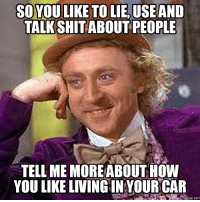 tell me more: SOVOU LIKE TOLIE, USE AND  TALKSHIT ABOUT PEOPLE  TELL ME MORE ABOUT HOW  YOU LIKE LIVING INYOUR CAR  memes. COM