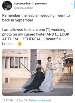 bunbunlittleone:  quantummindclassicalheart:  To clarify, they are bisexual, not lesbians: https://twitter.com/fancy_foxtrot/status/1205747696813756416    Important additional information! : soysauce bun * postcards  @soysaucetime  Remember the lesbian wedding I went to  back in September  I am allowed to share one (1) wedding  photo on my cursed twiter AND I... LOOK  AT THEM.... ETHEREAL.... Beautiful  brides...  12:17 AM · 12 Dec 19 · Twitter for Android bunbunlittleone:  quantummindclassicalheart:  To clarify, they are bisexual, not lesbians: https://twitter.com/fancy_foxtrot/status/1205747696813756416    Important additional information!