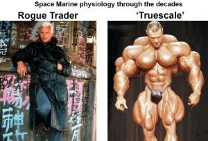 80s, Space, and Back: Space Marine physiology through the decades  Truescale'  Roque Trader Back in the 80's a transhuman space marine could fit in a fashionable coat