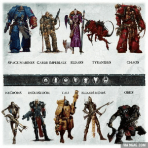 9gag, Marines, and Space: SPACE MARINES GARDE IMPERIALE ELDARS  TYRANIDES  CHAOS  NECRONS INQUISITION  TAU  ELDARS NOIRS  ORKS  VIA 9GAG.COM Choose your race