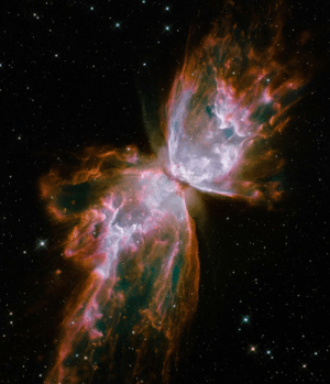 "Tumblr, Blog, and Space: space-pics:""Stellar demise in planetary nebula NGC 6302"" (3527x4110)"