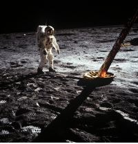 Tumblr, Apollo, and Blog: space-pics:  Astronaut Edwin F. Aldrin Jr., lunar module pilot, walks on the Moon near a leg of the Lunar Module during Apollo 11 extravehicular activity. Astronaut Neil A. Armstrong, Apollo 11 commander, took this photograph with a 70mm lunar surface camera. [1825 x 1883]
