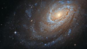 space-pics:  Hubble Captures a Cannibal Galaxy by NASA's Marshall Space Flight Center: space-pics:  Hubble Captures a Cannibal Galaxy by NASA's Marshall Space Flight Center