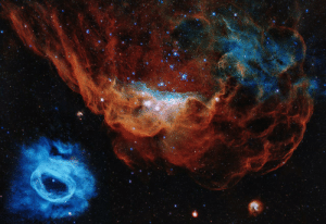 space-pics:  NGC 2020 (blue) and (red) NGC 2014, photo by Hubble Space Telescope. Credit: NASA, ESA, and STScI: space-pics:  NGC 2020 (blue) and (red) NGC 2014, photo by Hubble Space Telescope. Credit: NASA, ESA, and STScI