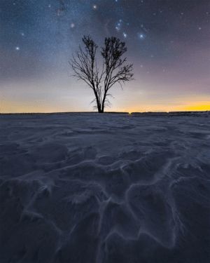 space-pics:  Orion and the winter side of the milky way riding high over a frozen Saskatchewan landscape [OC]: space-pics:  Orion and the winter side of the milky way riding high over a frozen Saskatchewan landscape [OC]