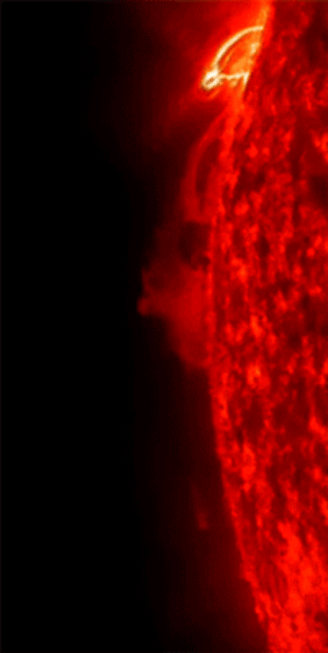 space-pics:Our wonderful sun belches up some plasma. It called a coronal mass ejection and if oriented towards us it wreaks havoc with our radio and electronic equipment and can knock out power grids. The ejection itself can travel million of miles and is 1000s of times larger than earth: space-pics:Our wonderful sun belches up some plasma. It called a coronal mass ejection and if oriented towards us it wreaks havoc with our radio and electronic equipment and can knock out power grids. The ejection itself can travel million of miles and is 1000s of times larger than earth