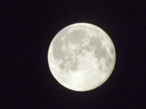 space-pics:  Picture of the moon I took in 2015.: space-pics:  Picture of the moon I took in 2015.
