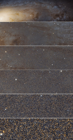space-pics:The close-up of the Andromeda Galaxy from the Hubble Space Telescope shows how many stars there really are.: space-pics:The close-up of the Andromeda Galaxy from the Hubble Space Telescope shows how many stars there really are.