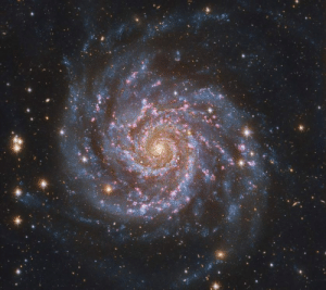 space-pics:  This is M74, the galaxy with the most perfect spiral known: space-pics:  This is M74, the galaxy with the most perfect spiral known