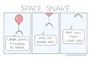 Space Snake: Space Snake