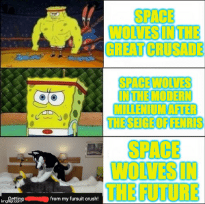Crush, Future, and Space: SPACE  WOLVES IN THE  GREAT CRUSADE  SPACEWOLVES  INTHE MODERN  MILLENIUM AFTER  THE SEIGE OF FENRIS  SPACE  WOLVES IN  THE FUTURE  Getting  imgflip.com  from my fursuit crush! They are slowly degenerating...