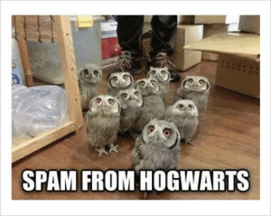 """Grow your wand with three simple steps!"": SPAM FROM HOGWARTS ""Grow your wand with three simple steps!"""