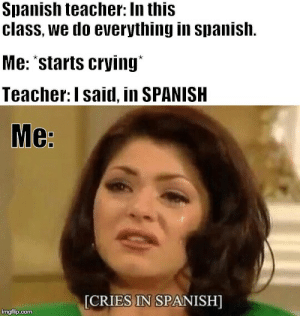 Old format, but just as relatable...: Spanish teacher: In this  class, we do everything in spanish.  Me: 'starts crying  Teacher: I said, in SPANISH  Me:  [CRIES IN SPANISH]  imgflip.com Old format, but just as relatable...