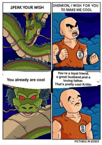 Krillin, Cool, and Pictures: SPEAK YOUR WISH SHENRON, I WISH FOR YOU  TO MAKE ME COOL  You're a loyal friend,  a great husband,and a  loving father.  That's pretty cool Krillin  You already are cool  PICTURES IN BOXES Wholesome answer from Shenron the dragon