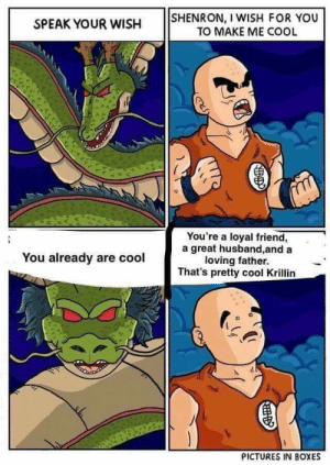 Krillin, Cool, and Good: SPEAK YOUR WISH SHENRON, I WISH FOR YOU  TO MAKE ME COOL  You're a loyal friend,  a great husband,and a  loving father.  That's pretty cool Krillin  You already are cool  PICTURES IN BOXES Good guy krillian