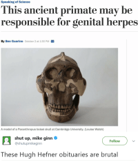 Herpes, Hugh Hefner, and Shut Up: Speaking of Science  his ancient primate may be  responsible for genital herpes  By Ben Guarino October 2 at 1:30 PM  A model of a Paranthropus boisei skull at Cambridge University. (Louise Walsh)   shut up, mike ginn Φ  @shutupmikeginn  Follow  These Hugh Hefner obituaries are brutal