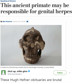 ise: Speaking of Science  This ancient primate may be  responsible for genital herpes  By Ben Guarino October 2 at 1:30 PM  A model of a Paranthropus boisei skull at Cambridge University. (Lou ise Walsh)   shut up, mike ginn  Follow  @shutupmikeginn  These Hugh Hefner obituaries are brutal