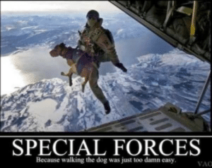 Memes, Dog, and Easy: SPECIAL FORCES  Because walking the dog was just too damn easy  VAC Memes