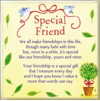 Life, Memes, and Time: Special  Friend  We all make friendships in this life,  though many fade with time  but, once in a while, it's special  like our friendship, yours and mine  Your friendship is a special gift  that treasure every day  A E  and hope you it  more than words can say