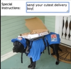 Definitely, Boy, and Delivery: Special  Instructions: boy  send your cutest delivery Definitely the cutest