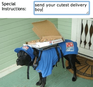 Boy, Delivery, and Cutest: Special  Instructions:  send your cutest delivery  boy   Deit's  Fixe