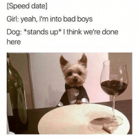 Bad, Bad Boys, and Cute: [Speed date]  Girl: yeah, I'm into bad boys  Dog: *stands up* I think we're done  here Sooo cute