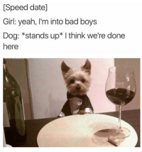 """<p>Sorry, I am a very good boy via /r/wholesomememes <a href=""""http://ift.tt/2k9TPuY"""">http://ift.tt/2k9TPuY</a></p>: [Speed date]  Girl: yeah, I'm into bad boys  Dog: *stands up* I think we're done  here <p>Sorry, I am a very good boy via /r/wholesomememes <a href=""""http://ift.tt/2k9TPuY"""">http://ift.tt/2k9TPuY</a></p>"""
