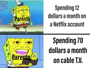 melonmemes:  Follow us on instagram for the best content!: https://www.instagram.com/realmelonmemes: Spending 12  dollars a month on  Parents  a Netflix account  Spending 70  dollars a month  Parents  on cable TV. melonmemes:  Follow us on instagram for the best content!: https://www.instagram.com/realmelonmemes