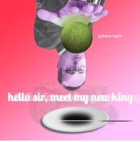 "<p>[<a href=""https://www.reddit.com/r/surrealmemes/comments/7vfjgy/a_trash_meme_that_no_one_will_be_able_to/"">Src</a>]</p>: sphere farm  hello sir, meet my new hing <p>[<a href=""https://www.reddit.com/r/surrealmemes/comments/7vfjgy/a_trash_meme_that_no_one_will_be_able_to/"">Src</a>]</p>"