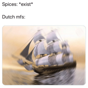 Memes, Wtf, and Dutch Language: Spices: *exist*  Dutch mfs: you already know wtf going on
