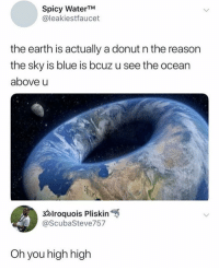 Smoking, Blue, and Earth: Spicy WaterTM  @leakiestfaucet  the earth is actually a donut n the reason  the sky is blue is bcuz u see the ocean  above u  3lroquois Pliskin  @ScubaSteve757  Oh you high high i need whatever he is smoking @gloriouslay
