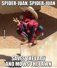 ~Deadpool: SPIDER-JUAN, SPIDER-JUAN  SAVES THE LADY  AND MOWS THE LAWN ~Deadpool