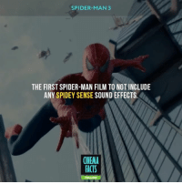Facts, Friends, and Memes: SPIDER-MAN 3  THE FIRST SPIDER-MAN FILM TO NOT INCLUDE  ANY SPIDEY SENSE SOUND EFFECTS  (NEMA  FACTS Hey, Look, Spidey caught Gwen without her dying XD ❤️Follow @cinfacts and tag your friends