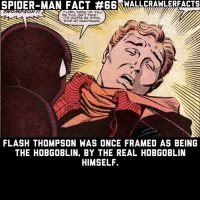 Hobgoblin is my favorite Marvel villain.: SPIDER-MAN FACT  #6  WALLCRAWLERFACTS  FLASH, WAKE UP! TELL  ITS GOTTA BE SOMB  KIND OF NIGHTMARE!  ME THIS ISN'T TRUE.  FLASH THOMPSON WAS ONCE FRAMED AS BEING  THE HOBGOBLIN, BY THE REAL HOBGOBLIN  HIMSELF. Hobgoblin is my favorite Marvel villain.