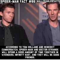 This has me very excited.: SPIDER-MAN FACT #86 WALLCRAWLERFACTS  ACCORDING TO TOM HOLLAND AND BENEDICT  CUMBERBATCH, SPIDER-MAN AND DOCTOR STRANGE  WILL SPEND A GOOD AMOUNT OF TIME TOGETHER IN  AVENGERS: INFINITY WAR'. AND THEY WILL BE GOOD  FRIENDS. This has me very excited.