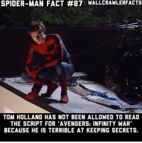 "Memes, Spider, and SpiderMan: SPIDER-MAN FACT #87 WALLCRAWLERFACTS  TOM HOLLAND HAS NOT BEEN ALLOWED TO READ  THE SCRIPT FOR 'AVENGERS: INFINITY WAR""  BECAUSE HE IS TERRIBLE AT KEEPING SECRETS. He literally doesn't know what's going to happen 😂"