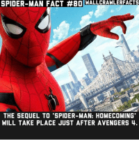 """It's cool seeing the big events of MCU through the eyes of Spider-Man.: SPIDER-MAN FACT #BOWALLCRAWLERFACTS  THE SEQUEL TO 'SPIDER-MAN: HOMECOMING""""  WILL TAKE PLACE JUST AFTER AVENGERS 4. It's cool seeing the big events of MCU through the eyes of Spider-Man."""