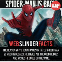 Jealous, Memes, and Spider: SPIDER-MAN IS BAMEF  SLINGER  FACTS  THE REASON WHY JONAH JAMESON HATES SPIDER-MAN  SO MUCH IS BECAUSE HE ENVIES ALLTHE GOOD HE DOES  AND WISHES HE COULD DO THE SAME ▲▲ - He does seem like the jealous type. - My other IG accounts @factsofflash @yourpoketrivia @facts_of_heroes ⠀⠀⠀⠀⠀⠀⠀⠀⠀⠀⠀⠀⠀⠀⠀⠀⠀⠀⠀⠀⠀⠀⠀⠀⠀⠀⠀⠀⠀⠀⠀⠀⠀⠀⠀⠀ ⠀⠀--------------------- spiderman peterparker tomholland marvelfacts spidermanfacts webslingerfacts venom carnage avengers xmen justiceleague marvel homecoming tobeymaguire andrewgarfield ironman spiderman2099 civilwar auntmay daredevil gwenstacy maryjane deadpool miguelohara hobgoblin miles morales punisher
