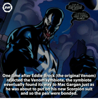 Memes, Spider, and Brock: SPIDER MAN  SWF  LAST STAND  HAVE MAAED  THAT FOR THE  One time after Eddie Brock (the original Venom)  rejected the Venom symbiote,the symbiote  eventually found its way to Mac Gargan just as  he was about to put on his new Scorpion suit  and so the pair were bonded. Venom!!!! 😈 Follow @marvelousfacts @animalplanetfacts 😸 Go hit my link in bio for an amazing Marvel game! 🙀