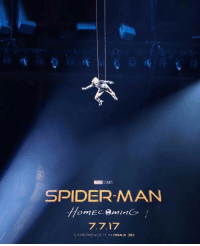 Imax, Spider, and Experience: SPIDER-MANN  EXPERIENCE IT IN IMAX 30