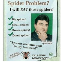 "Dumb, Spider, and Spiders: Spider Problem?  I will EAT those spiders!  Big spider!  Small spider!  Brown spider!  Dumb spider!  Glenn Funtz,  spider eater  ""Spiders are yum yum  in my tum tum!""  NOODLE  CALL NOW:  1-800-EAT-SPLL  SPOODLERS!"
