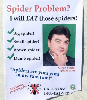 "memehumor:  He Doesn't Discriminate: Spider Problem?  I will EAT those spiders!  Big spider!  Small spider!  Brown spider!  Dumb spider!  Spiders are yum yum  Glenn Funtz,  spider eater  in my tum tum!""  NOODLECALL NOW:  1-800-EAT-SPIT memehumor:  He Doesn't Discriminate"